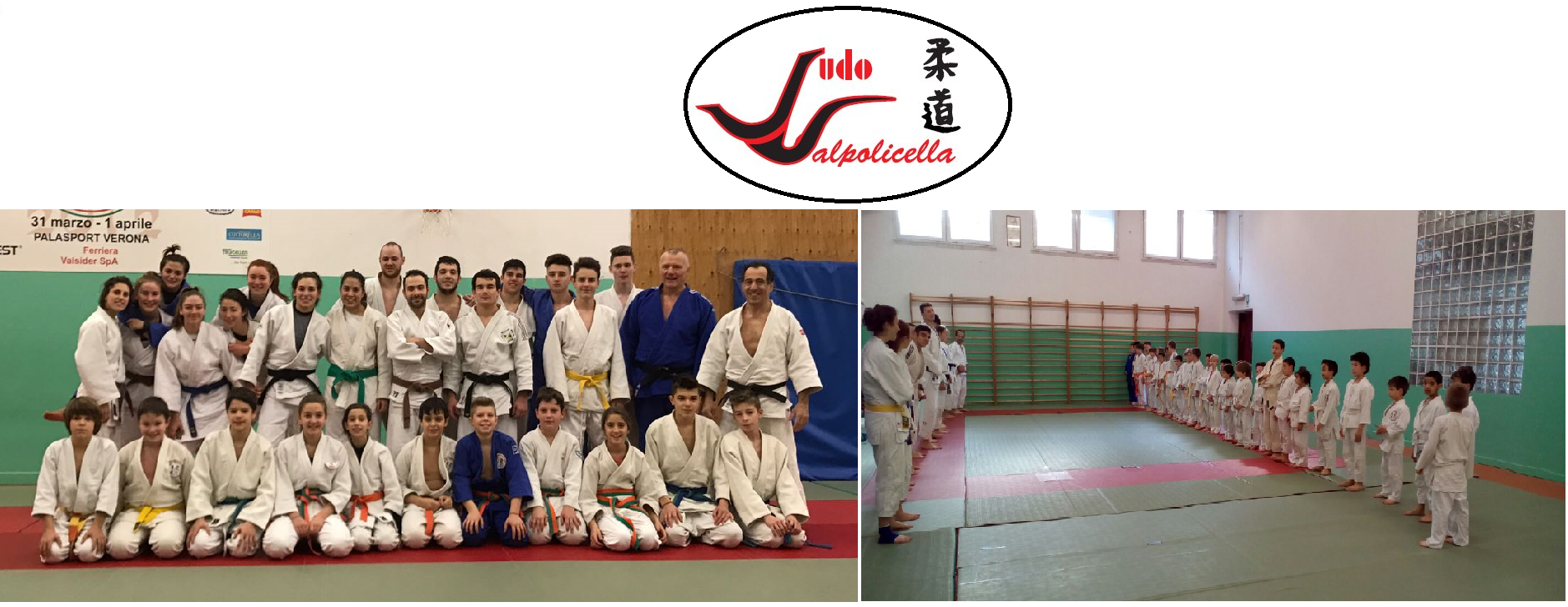 collage-judo-2